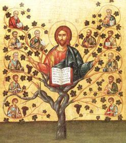 crbst_jesus-the-true-vine